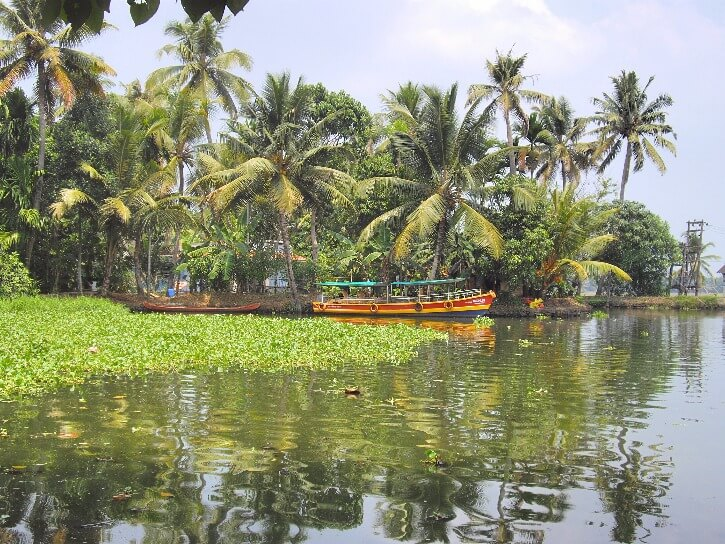 How to visit Alleppey backwaters in Kerala India