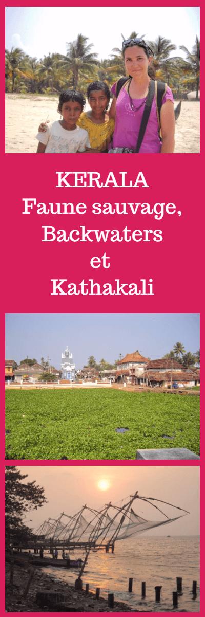 Guide complet pour préparer votre voyage au Kerala Inde du Sud
