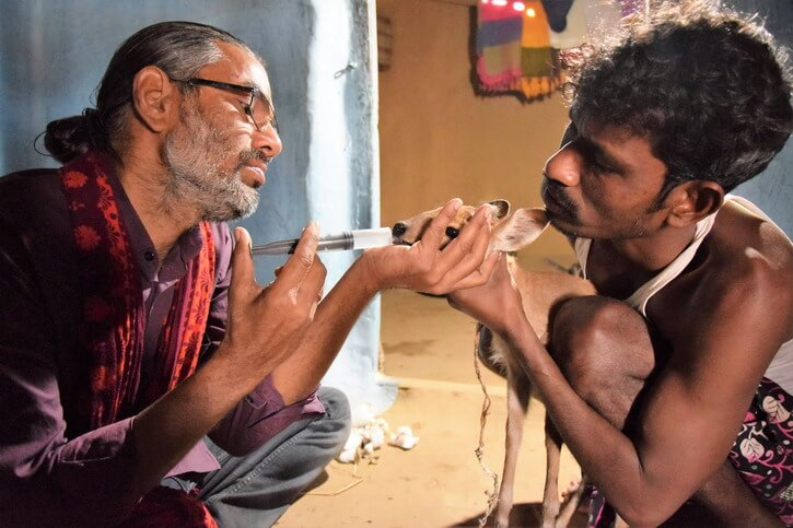 Shakeel and the Tribal guy who rescued the barking deer giving him vitamins with a syringe