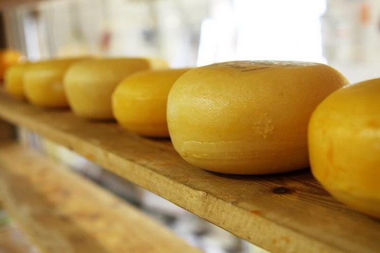 Roues de fromage de brebis Ardi-gasna