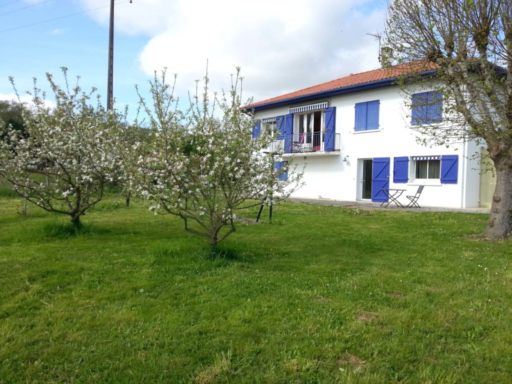 the white and blue house seen from the orchard