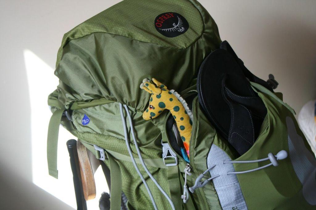 Pourquoi opter pour le sac à dos classique