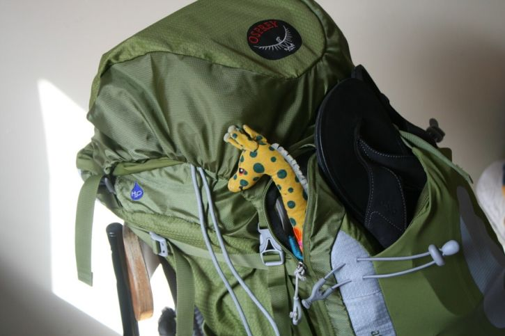 Why to choose a backpack to travel
