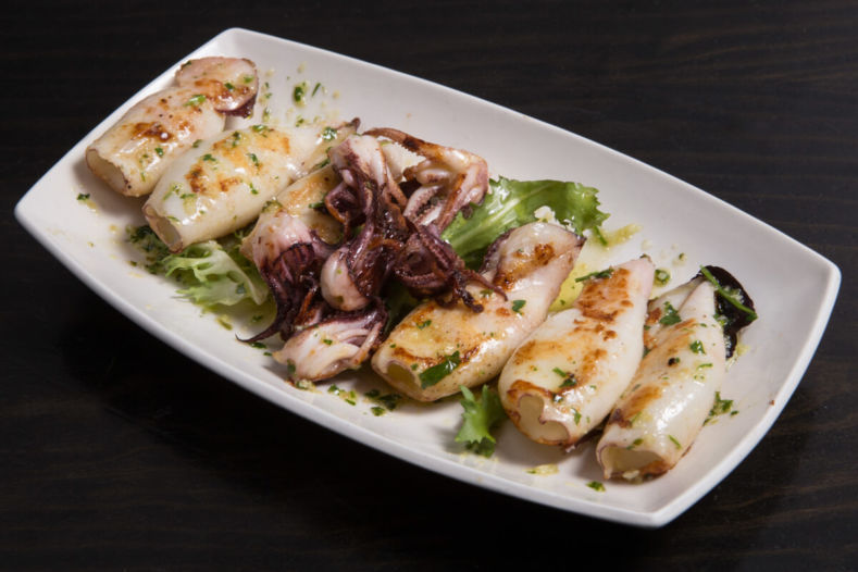 Grilled squids on a plate
