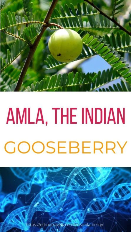 Where to buy amla and why