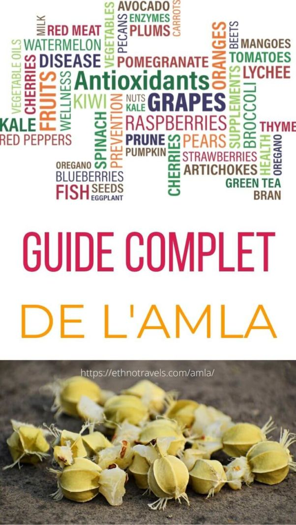 Pin amla guide complet