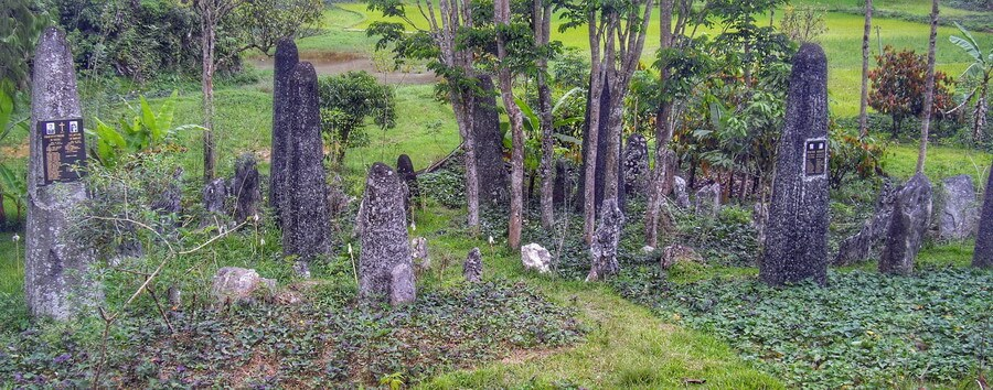 Megaliths in Bori rante, ceremonial field close to Makale