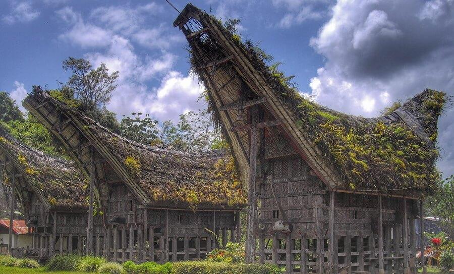 Tongkonan de Lemo Pays Toraja