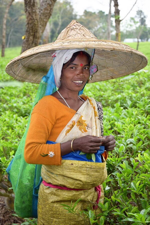 The beautiful smile of a woman from the tea tribe in Assam, working in the plantation