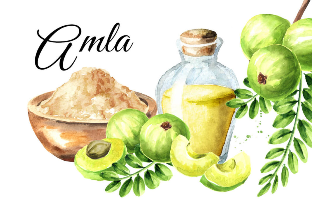 Different forms of amla