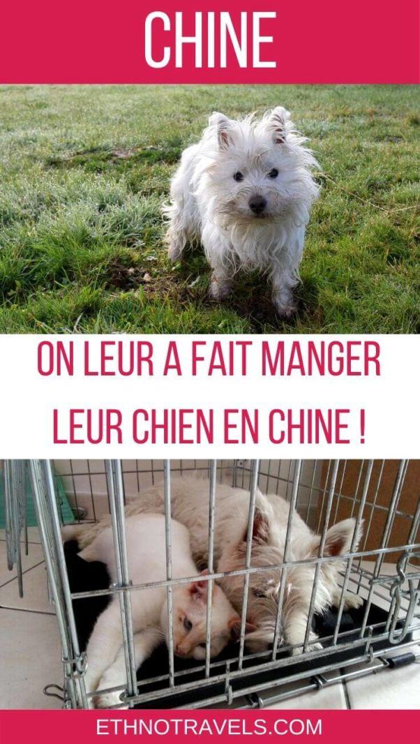 Ils ont mangé leur chien en Chine