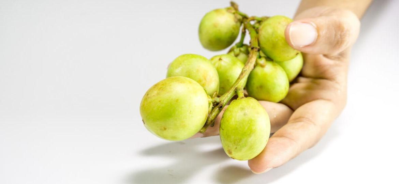 Amla Berry Supplement Reviews