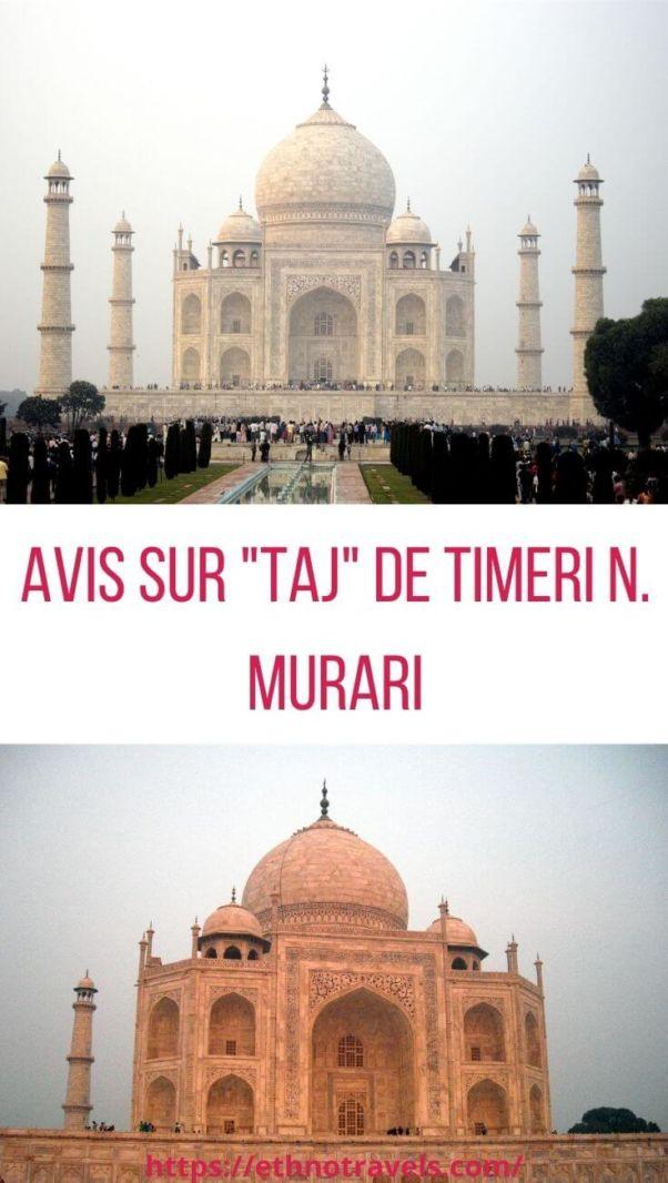 Critique de Taj de Timeri Murari