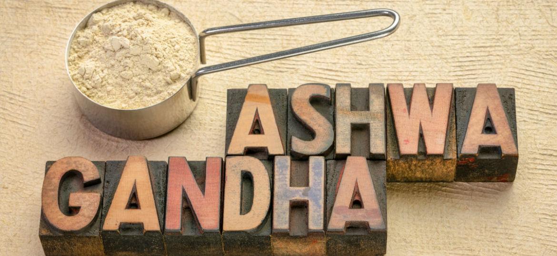 Ashwagandha or Whitania Somnifera or Indian Ginseng