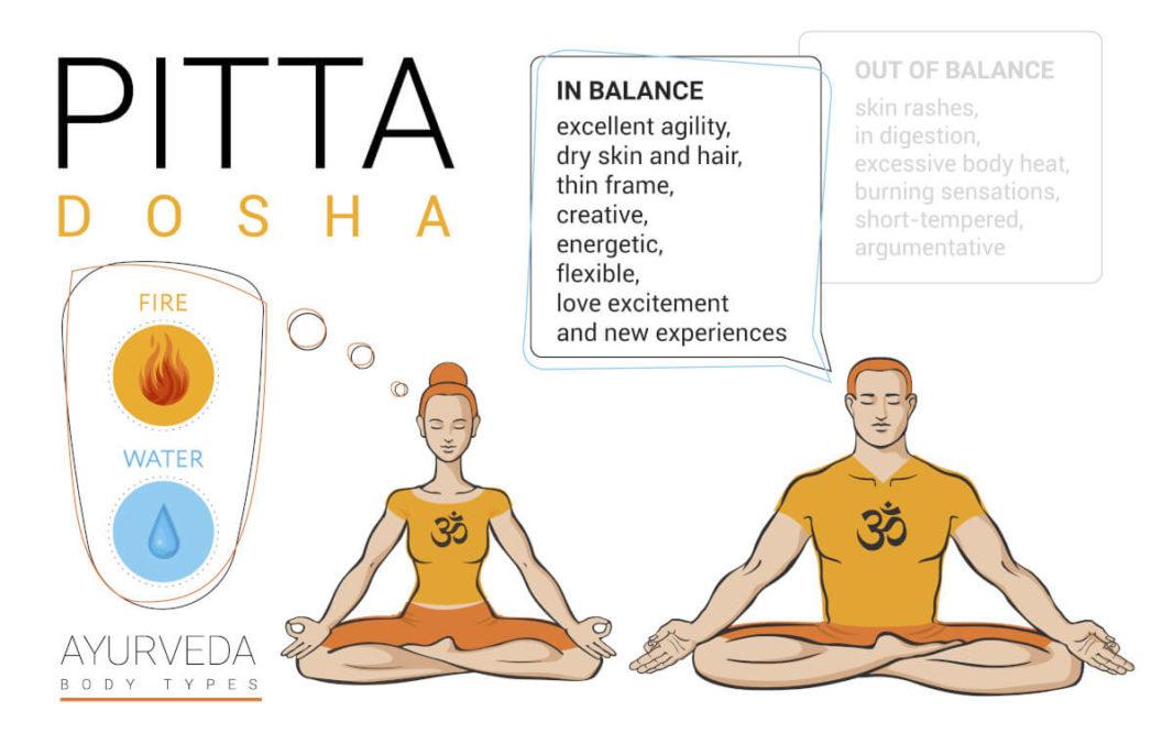 Pitta body type characteristics