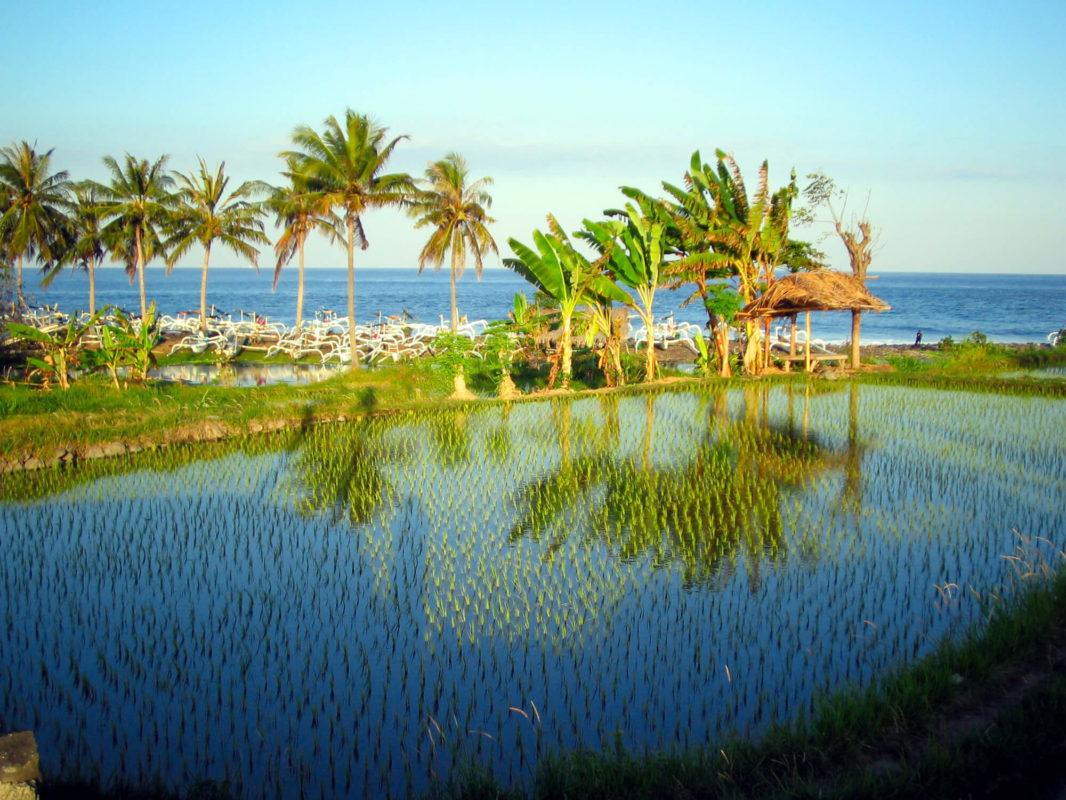 Eizière sur la plage à côté du palais d'Ujung