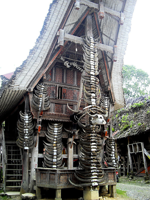 Façade d'un tongkonan ornée de nombreuses cornes des buffles sacrifiés lors de funérailles