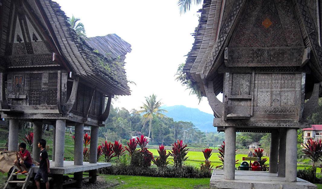 Maisons traditionnelles Toraja avec rizières et montagnes